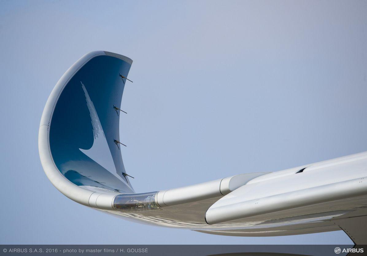 Name:  Wingtip2.jpg Views: 559 Size:  49.4 KB