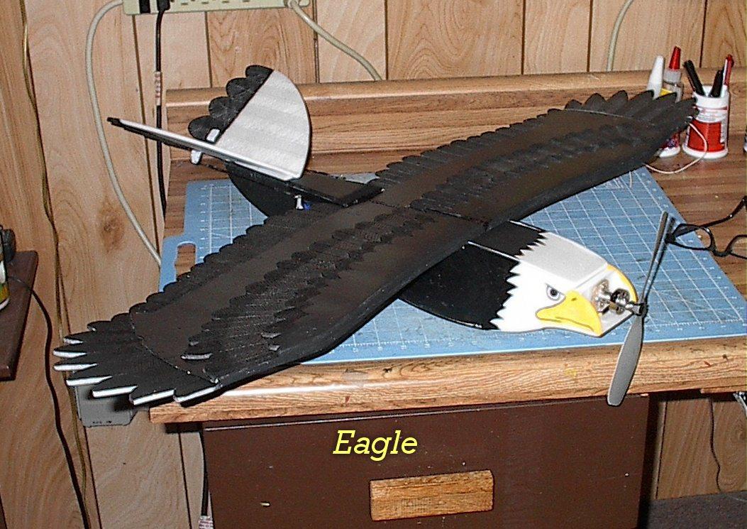 Eagle_Build